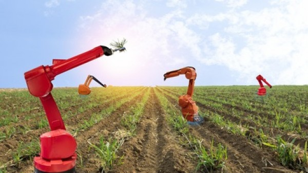 机器视觉机器人在农业中的应用