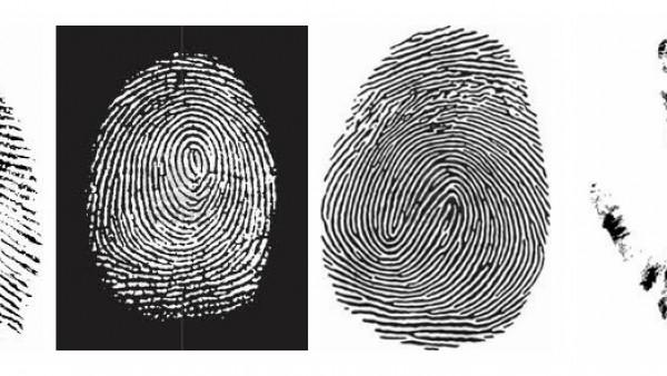 生物特征识别技术 个人身份的鉴定