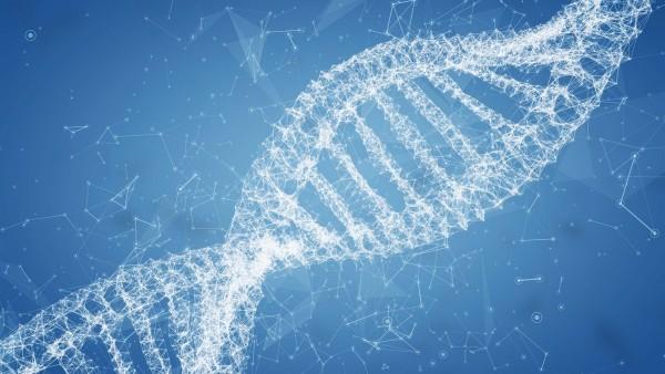 生命科学视觉系统如何帮助探索人类基因组?